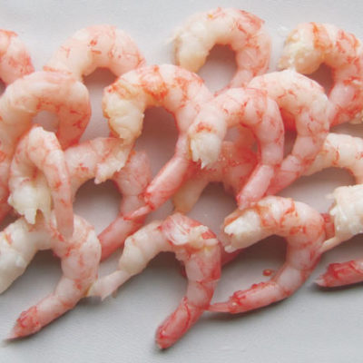 Cooked & Peeled Shrimp